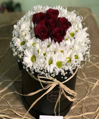 Kutuda Papatya Ve Kırmızı Güller