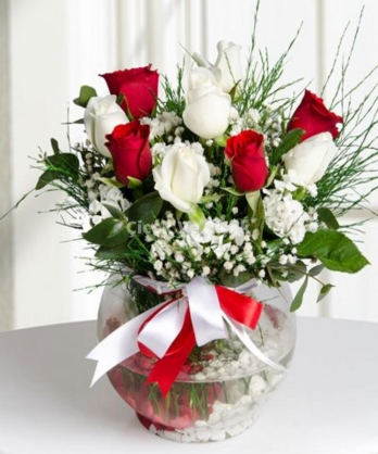 Fanusta Kırmızı Beyaz Güller