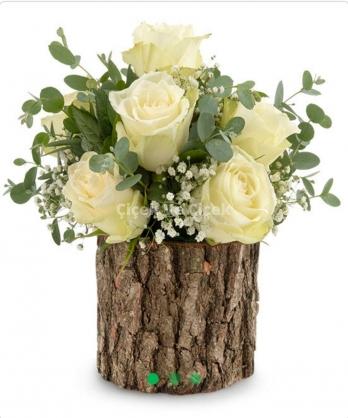 Doğal Kütükte Beyaz Güller