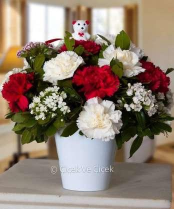 Kırmızı Beyaz Karanfiller